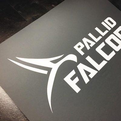 Das Pallid Falcon Logo auf der Trainingsmatte