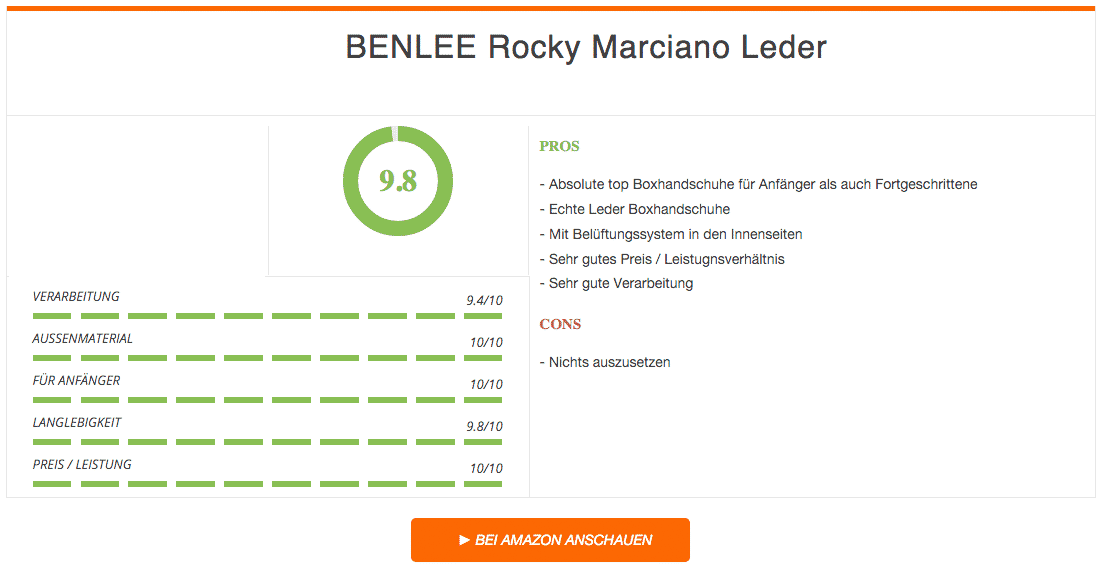 BENLEE Rocky Marciano Leder Boxhandschuhe Fighter Ergebnis