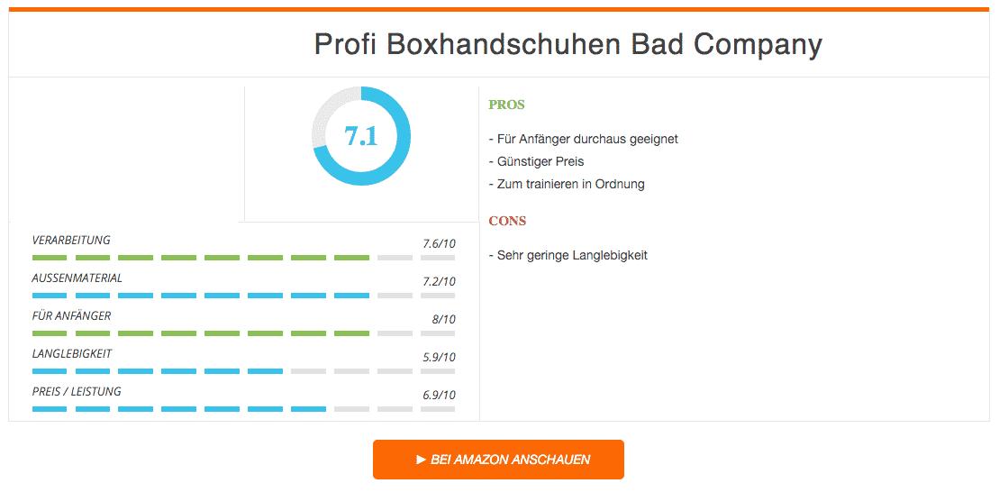 Profi Boxhandschuhe Bad Company Ergebnis