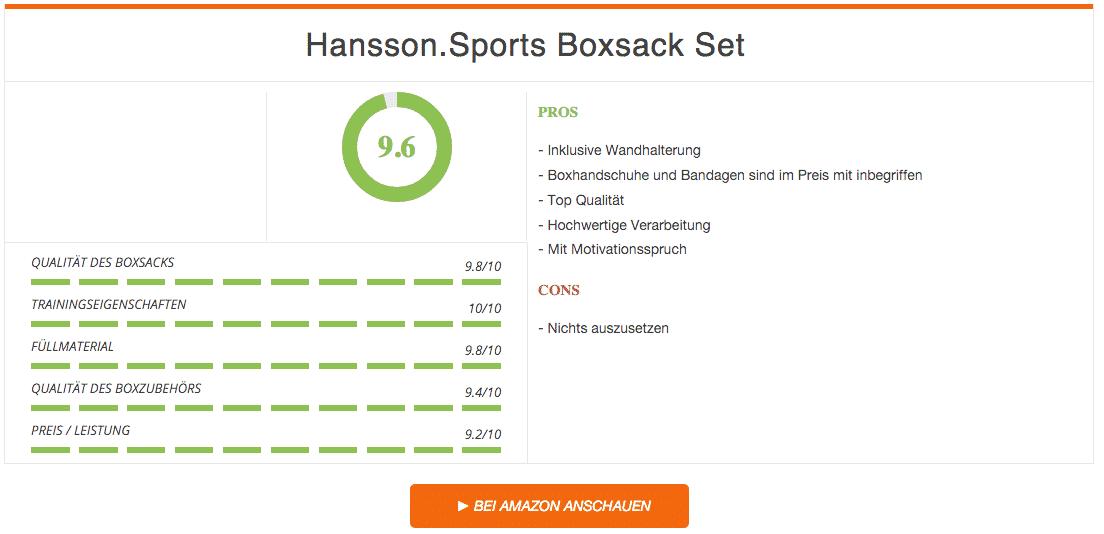 Hansson Sports Boxsack Set mit Wandhalterung Schwarz Ergebnis