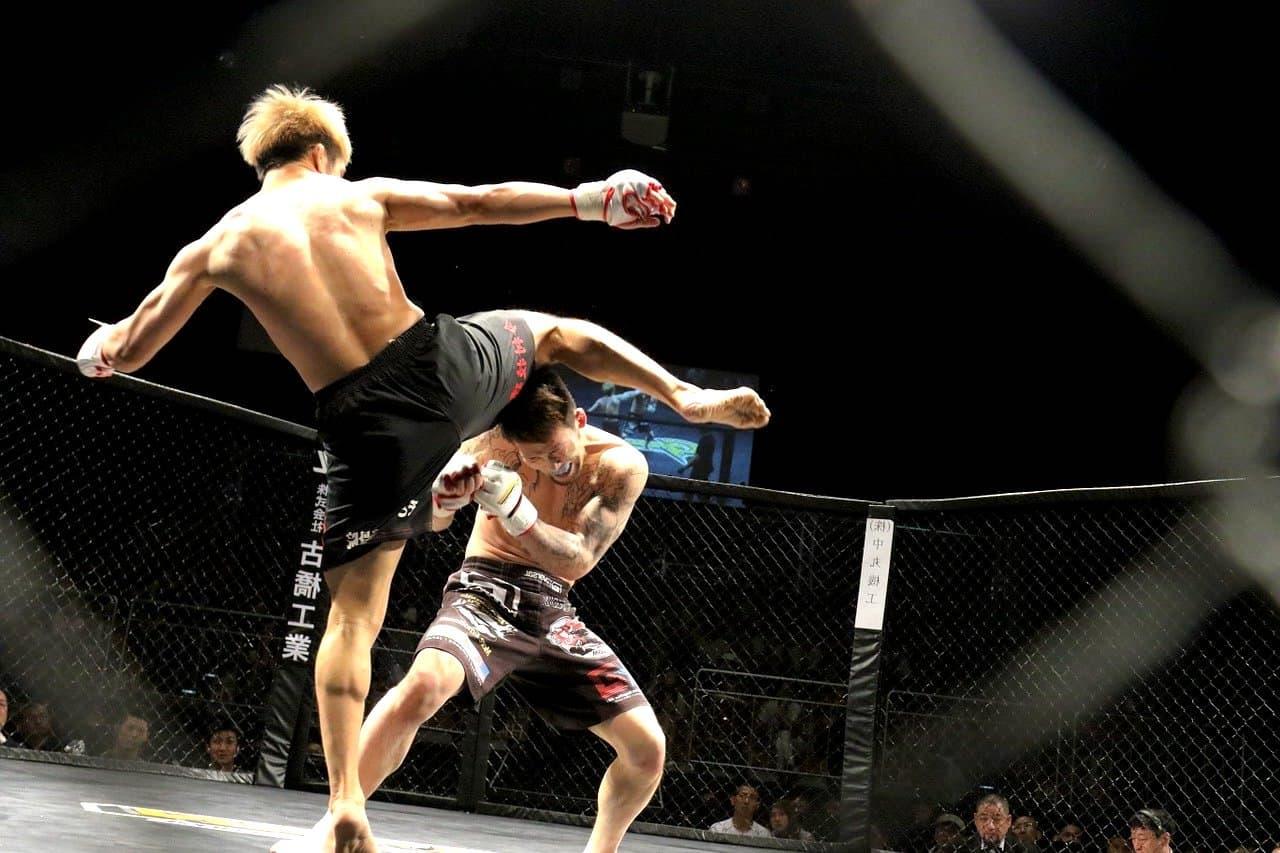UFC-Wettanbieter